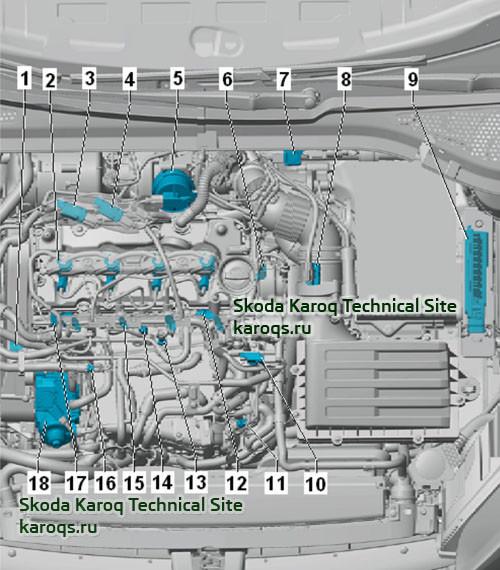 Дизельные двигатели 2,0 TDI и 1,6 TDI - расположение датчиков и компонентов