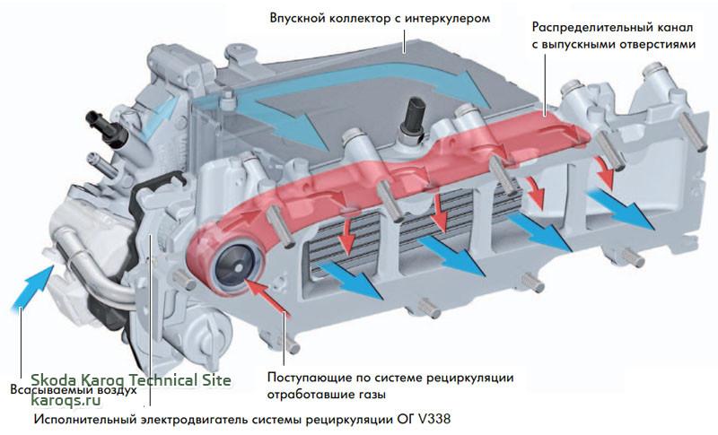 Распределительный канал контура рециркуляции ОГ высокого давления во впускном коллекторе